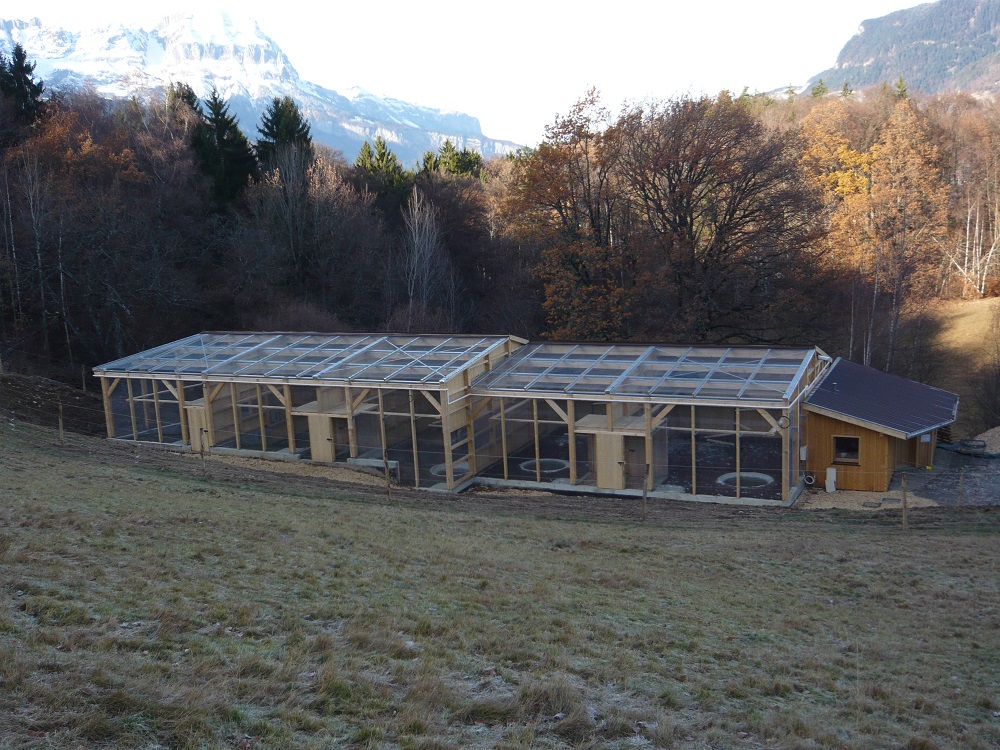 Centre d'élevage de gypaète en Haute-Savoie